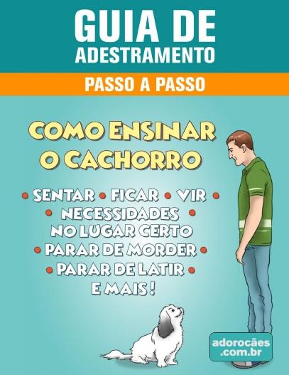 Aprenda a adestrar o seu cão  Passo a Passo